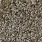 Your Choice Solid Carpet Upgrade (Modular home)